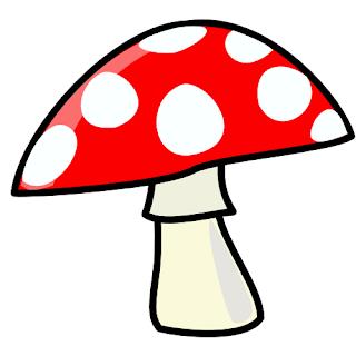 jamur/fungi
