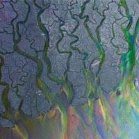 The Top 50 Albums of 2012: 08. alt-J - An Awesome Wave