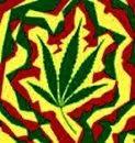 Cuidado com as drogas