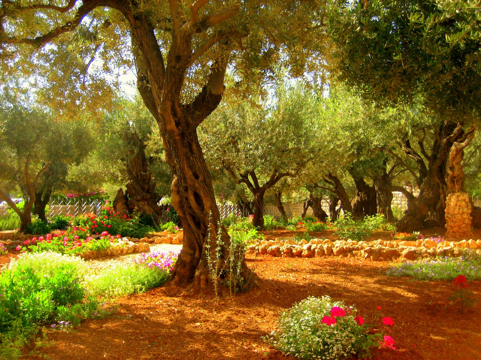 The World Is A Book And Those Who Do Not Travel Read Only One Page St Augustine Garden Of