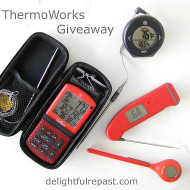 ThermoWorks Giveaway / www.delightfulrepast.com
