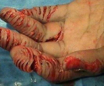 punishment for reading bible - Punição Dada a Quem Ler a Bíblia Na Arábia Saudita