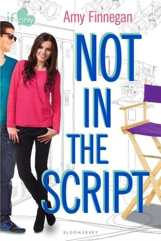 Not in the Script book cover
