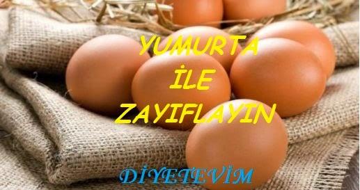 günde 1 yumurta