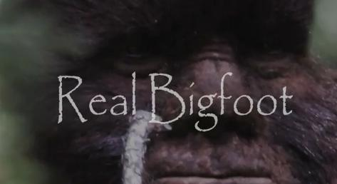 realbigfoot.jpg