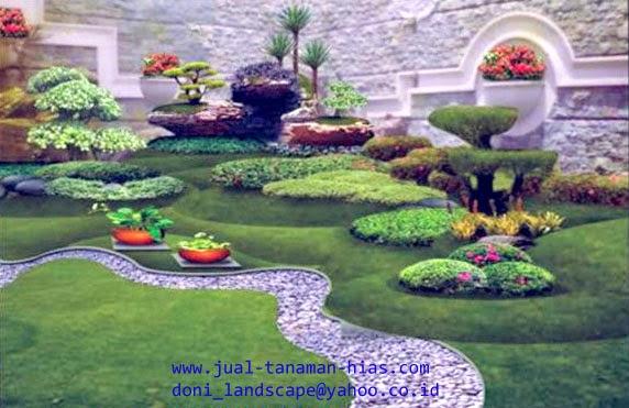 Taman Minimalis | Kolam Minimalis | Kolam Hias | Taman Kolam Hias Minimalis | Desain Minimalis | Jual Tanaman Hias