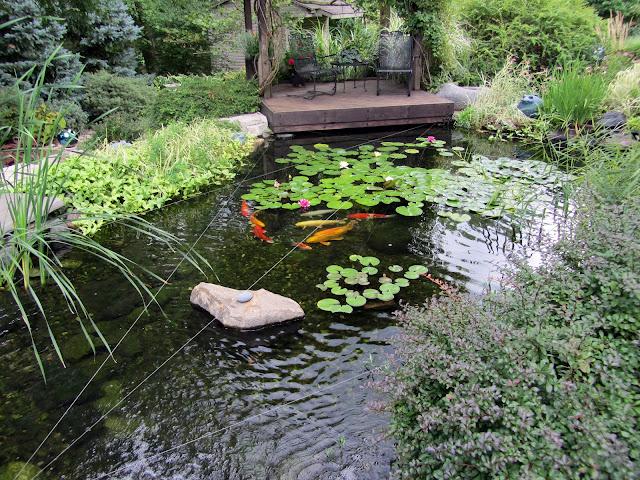 Gatsbys Gardens Sep 3 2012