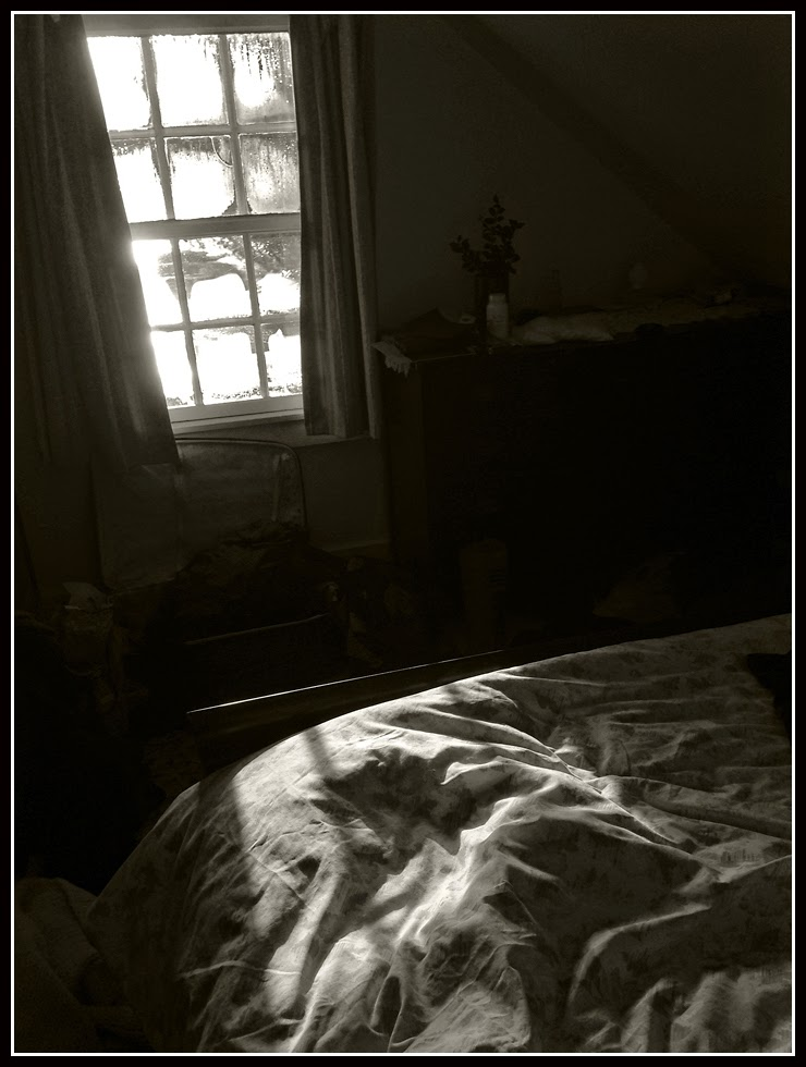 Nova Scotia; Bed; Window; Morning