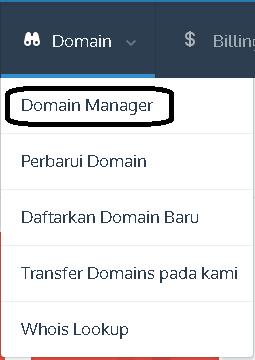 free manage dns idwebhost
