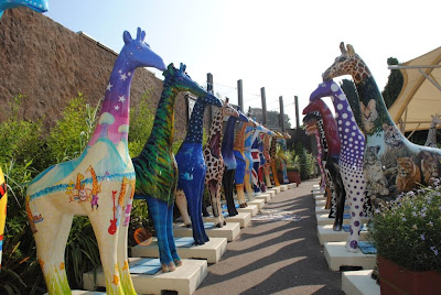 Nextra-terrestrial giraffe with all Stand Tall giraffe friends at Colchester Zoo