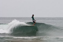 Single Fin Logging