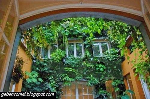 Keindahan Taman Dinding Karya Ahli Botani Ternama Dunia ini Boleh Bikin Anda Jadi Bodoh