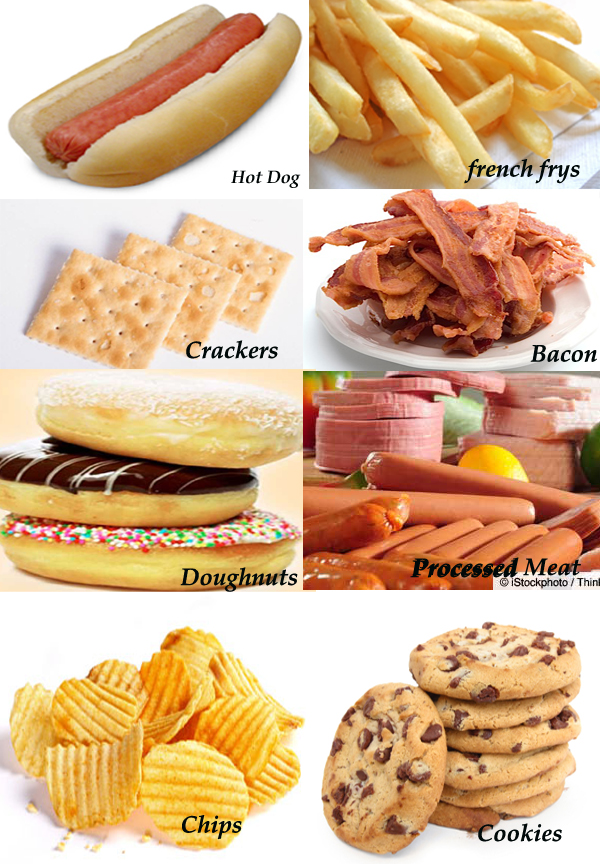 Non Cancer Causing Dog Food