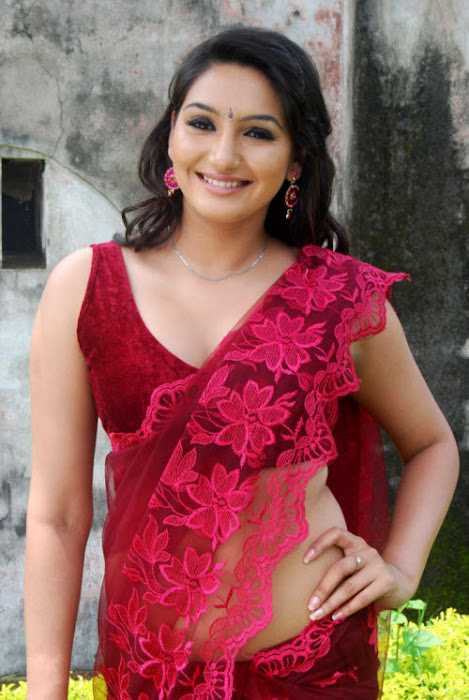 film model ragini dwivedi in saree