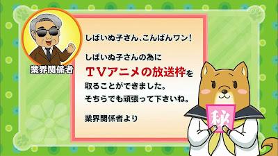 Shiba Inuko san Uzu anime anuncio