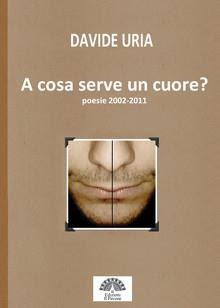 http://www.amazon.it/serve-poesie-2002-2011-Davide-ebook/dp/B00ESD2HPQ/ref=sr_1_1?s=digital-text&ie=UTF8&qid=1377960188&sr=1-1