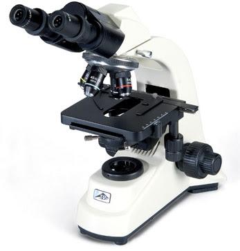 Microscópio óptico - Componentes e manuseio