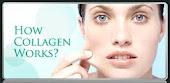 How Collagen Works?