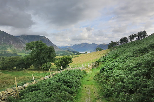 Low Fell, Crummock Water, Buttermere Walk, Lake District, Best View