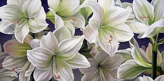 Bellas Flores Pintadas