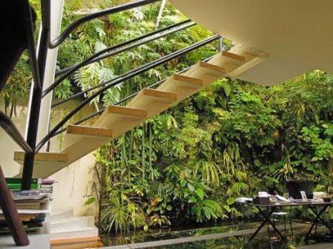 Patrick Blanc, Inilah Dewanya Pembuat Taman Vertikal
