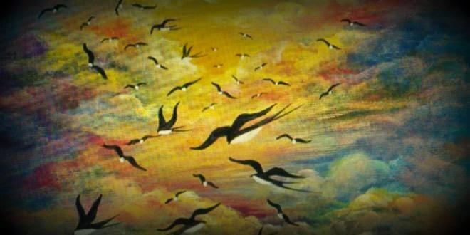 Αποτέλεσμα εικόνας για χελιδονια πετούν