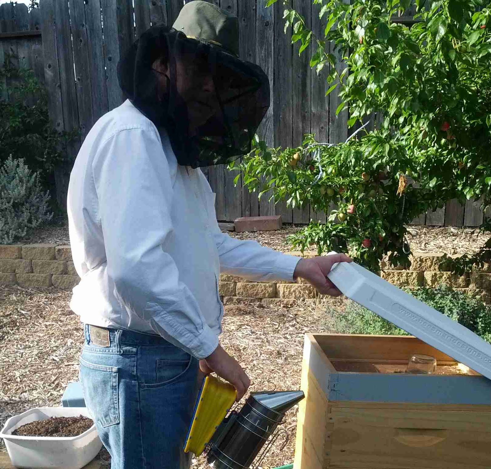 Photo: me working at the hive.