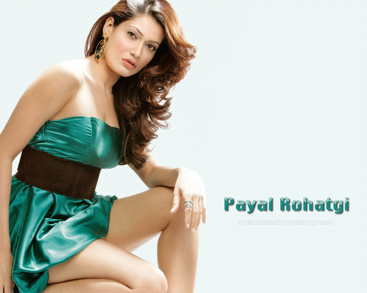 wallpapers hd : payal rohatgi hd wallpapers