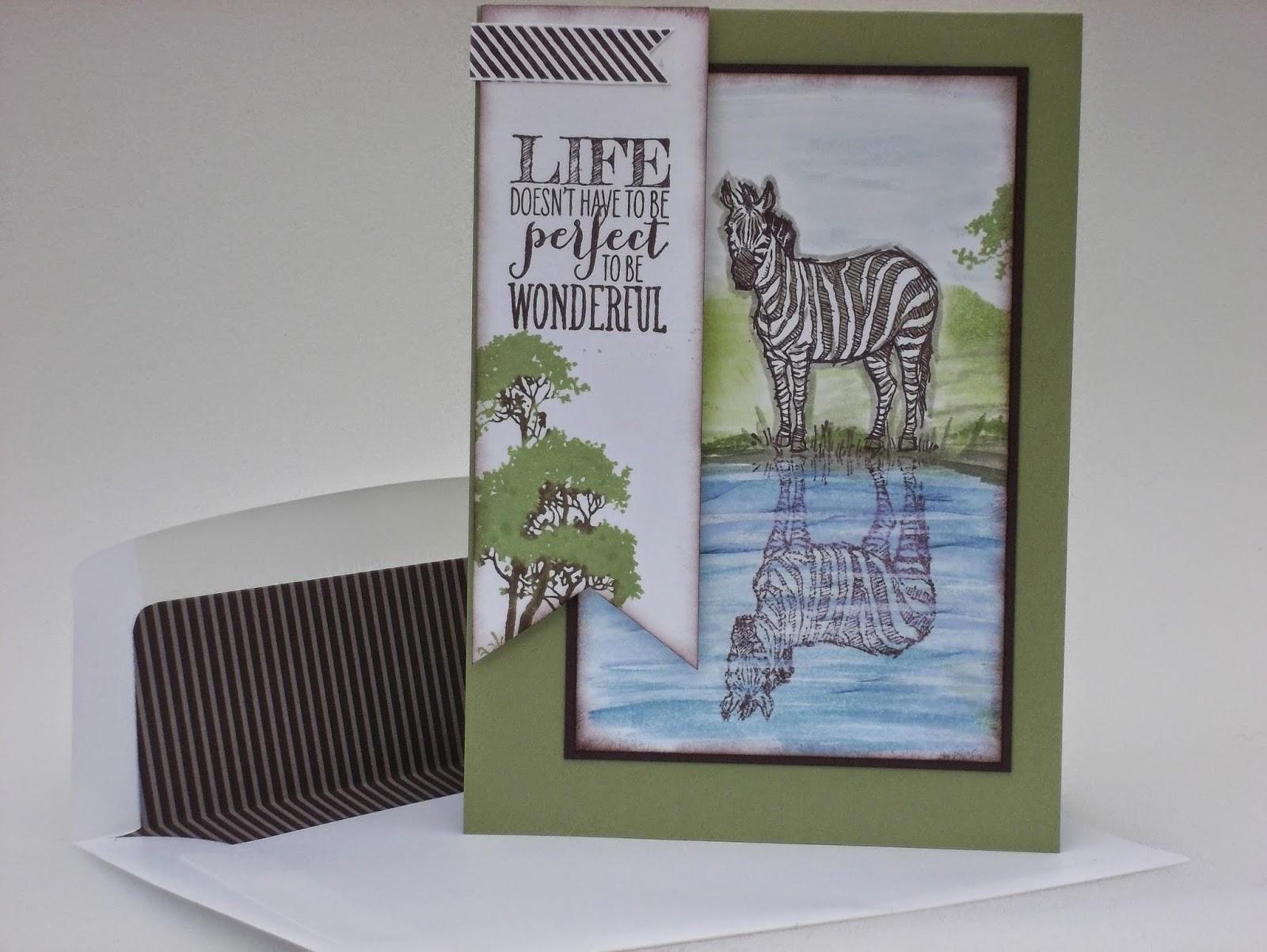 Zoo Review Zebra