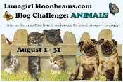 Lunagirl Challenge