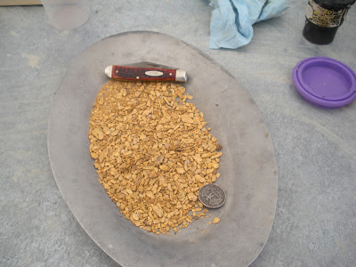 Prospecting For Gold: over a pound of gold!