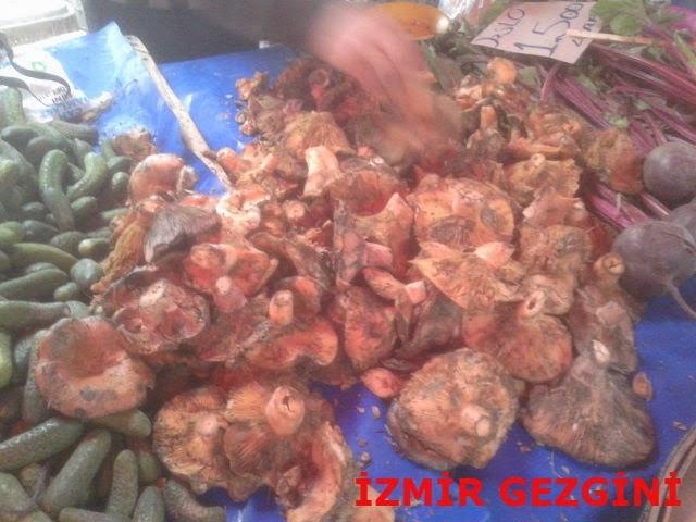 izmir pazarında çıntar