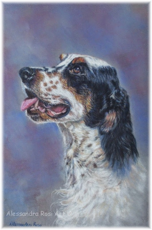 pet portraits, painted dog portrait, dog portrait from photo