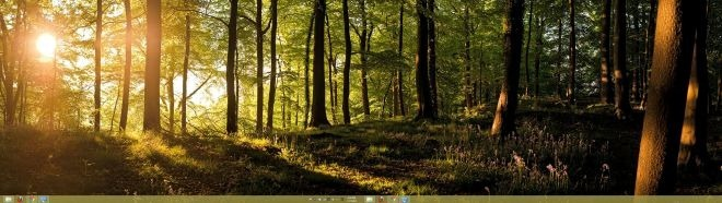 Forests Panoramic Theme   Search Results   Calendar 2015