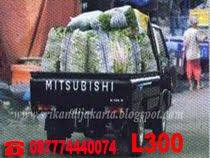 MITSUBISHI - L 300