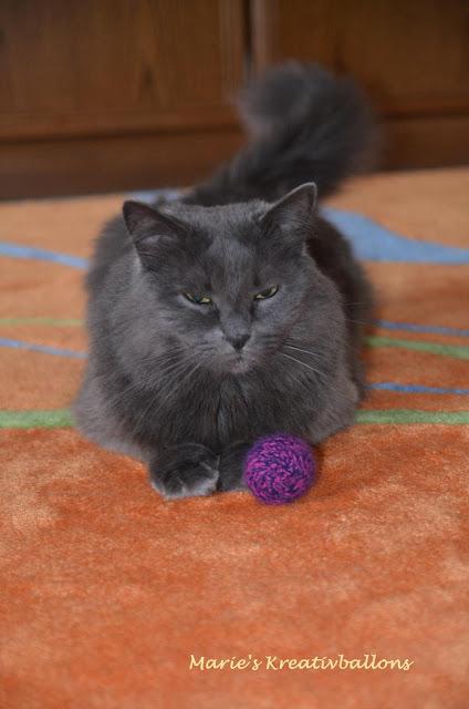 Katzenball stricken
