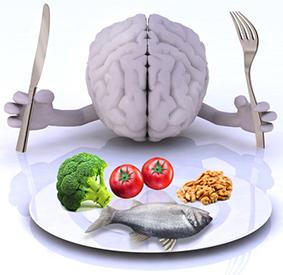"""Résultat de recherche d'images pour """"cerveau alimentation neuromédiateurs"""""""