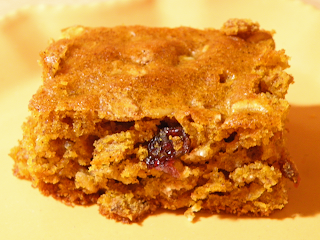 Closeup of Pumpkin Cranberry Bar