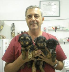 Blog controlado por el Dr. Settembrini Javier