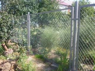 Забор из сетки-рабицы в рамке. Фото 1