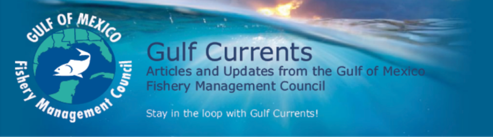 Gulf Currents