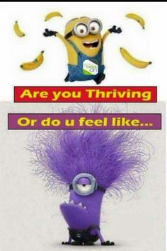 TIME TO GET YOUR THRIVE ON!!!