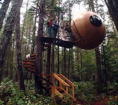 rumah pohon bundar