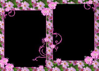 Moldura Florida Rosa No Formato     Espaco Para 2 Fotos Em Otima