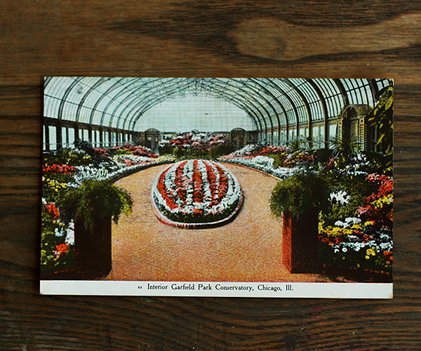 Garfield Park Conservatory Chicago Ill