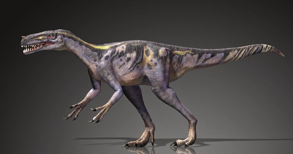 Marchan Blog: プロケラトサウルス Proceratosaurus