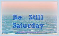 http://aspiritofsimplicity.blogspot.com/