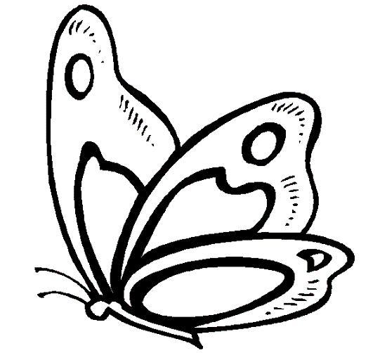 Mariposa De Perfil Tattoos Galeras Dibujos Si Decimos Tatuajes