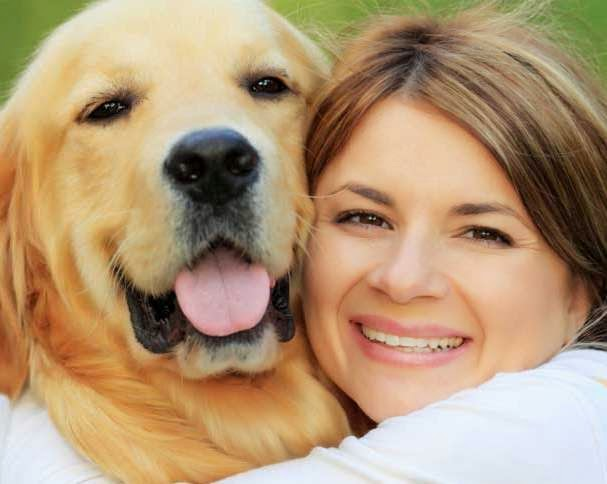2015 Dog Forecast For Love and Money