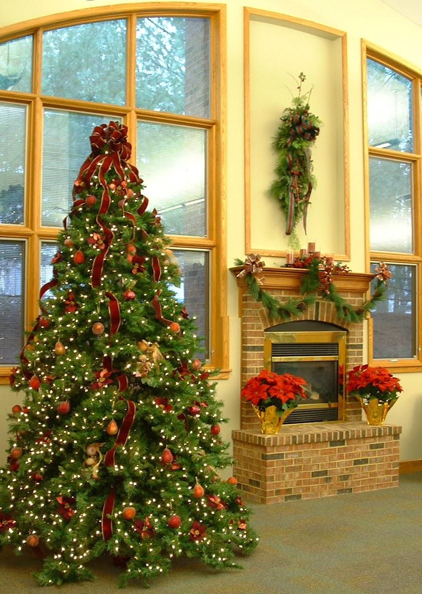 christmas trees 4 cheap - Cheap Christmas Trees